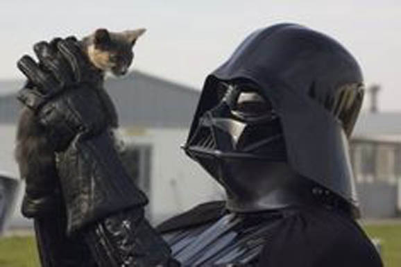 vader_holds_kitty