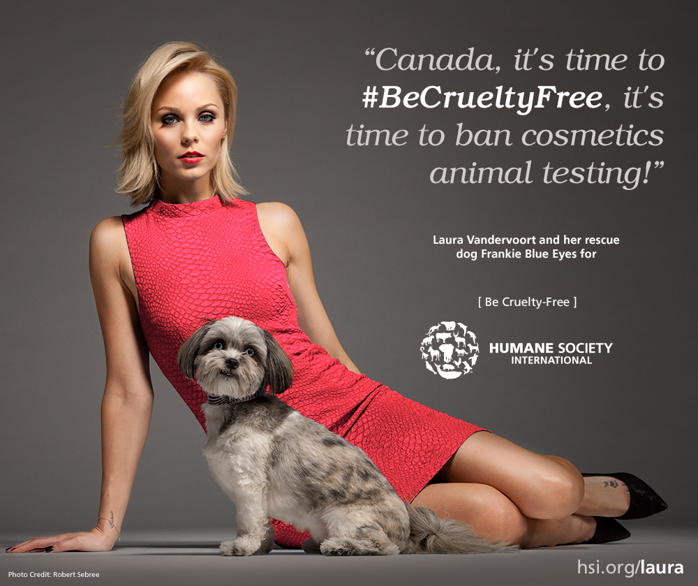 animal testing should be banned by society and the government